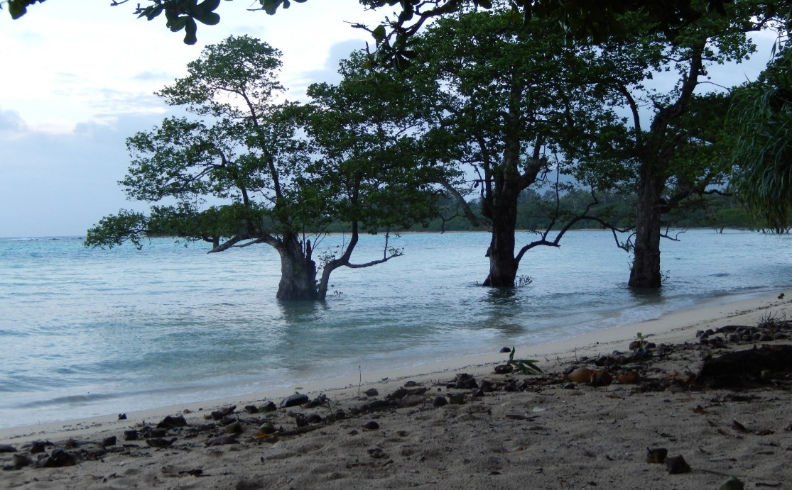 Climate Change impacts in Vanuatu